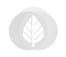 Inbouw cilinderslot RVS tuindeur met rozet